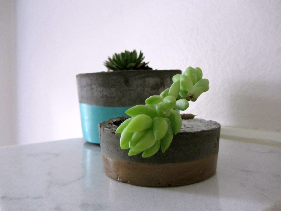 DIY concrete planter