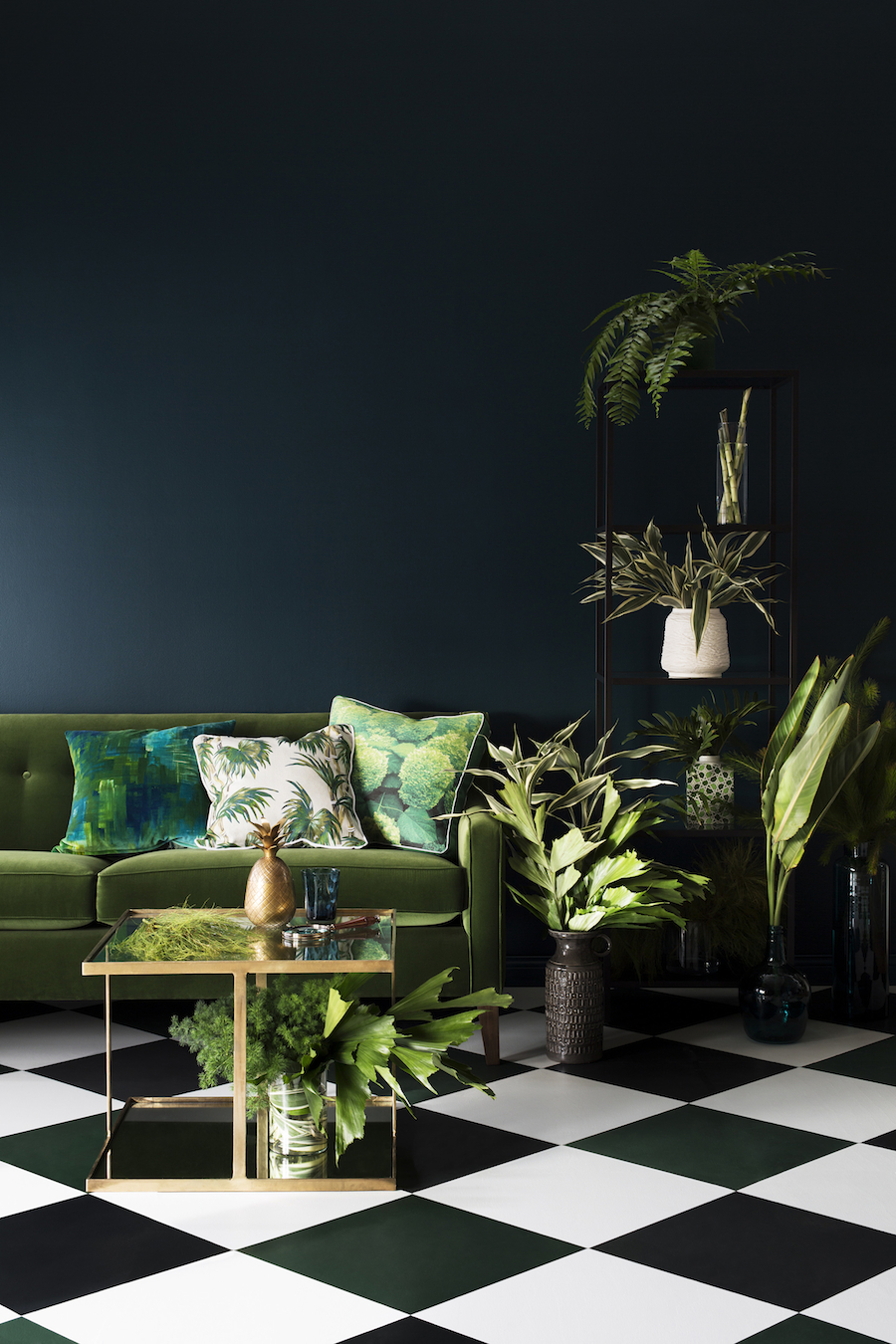 Haymes 2015 Colour Forecast