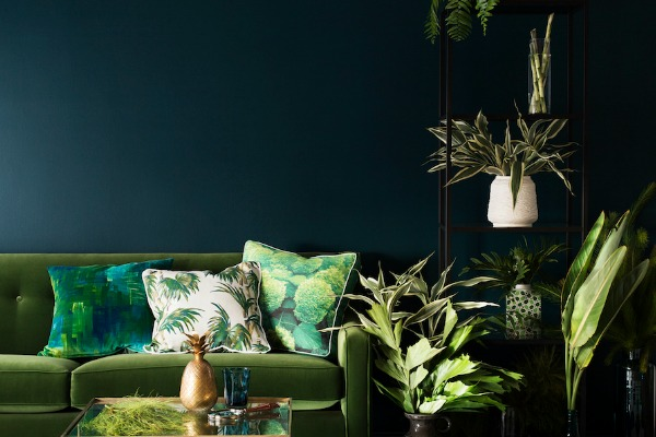 Haymes 2015 Colour Forecast Preview