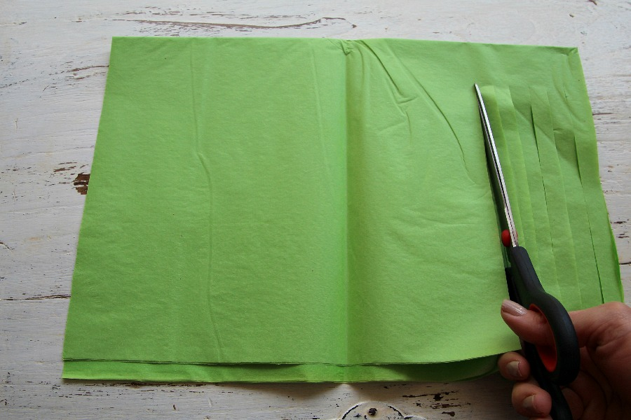 Cut along length of tissue paper