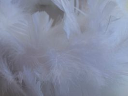 Close up of DIY feather wreath