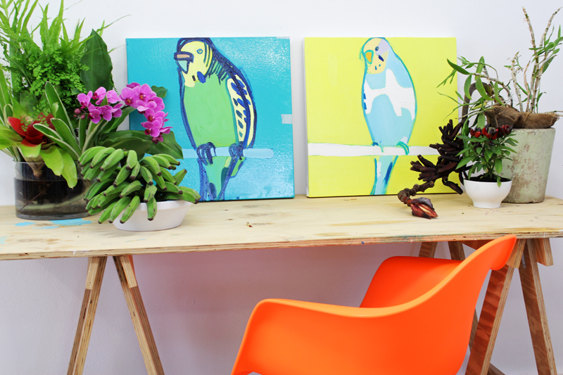 Two budgie paintings