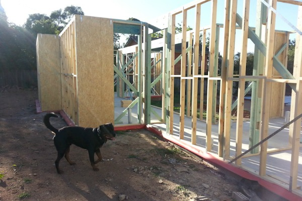 Construction Update 7: Frames and Trusses