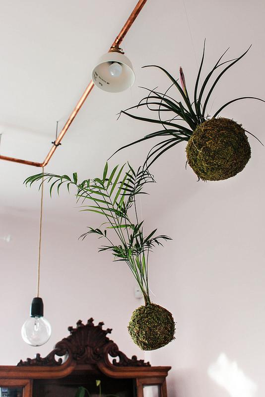Hanging planter balls