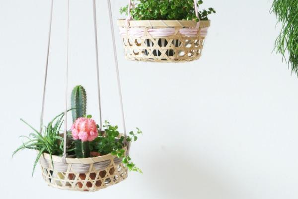 Top 9 ideas to display indoor plants