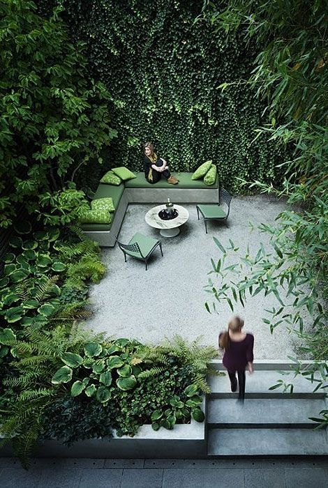 Lush green courtyard