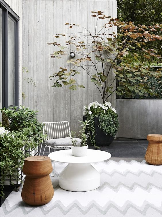 Sleek and elegant outdoor area