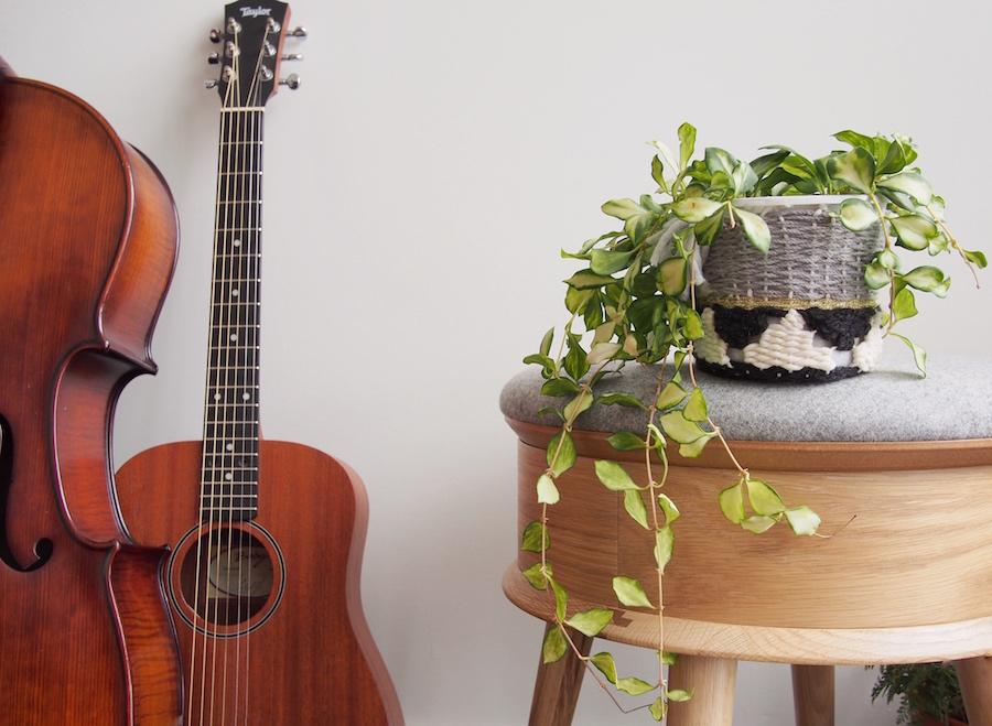 Pot plant cosy