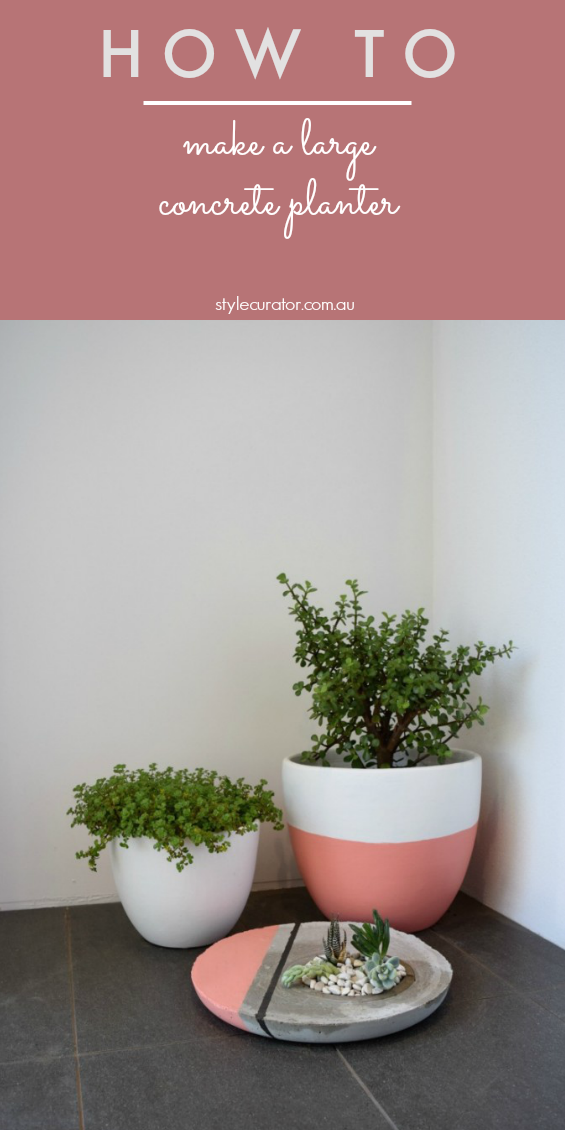 Pinterest image for concrete planter