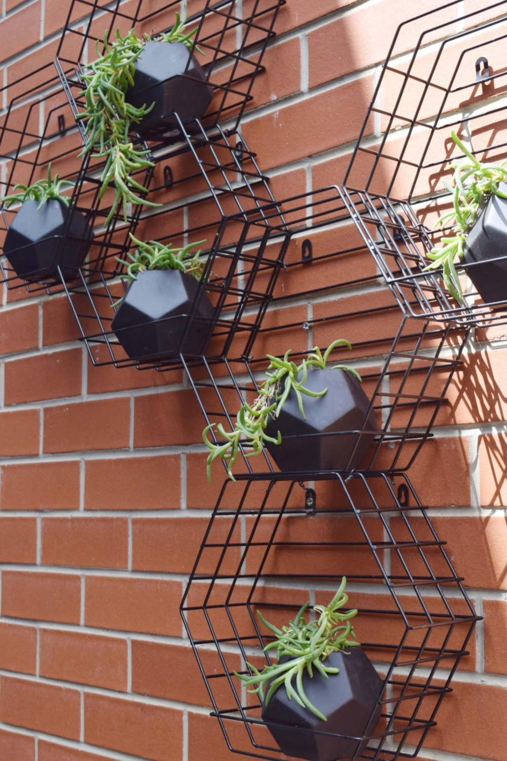 Hexagon vertical garden