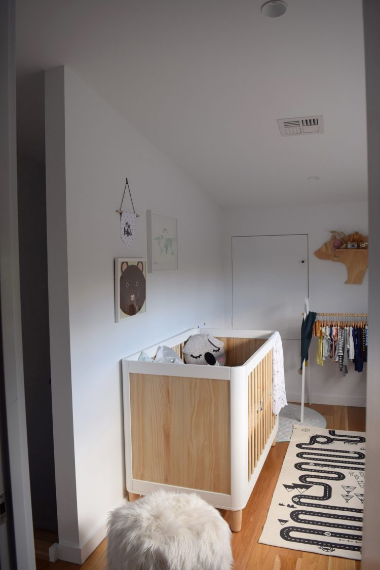 Patrick's tiny nursery and tips for setting up a small nursery