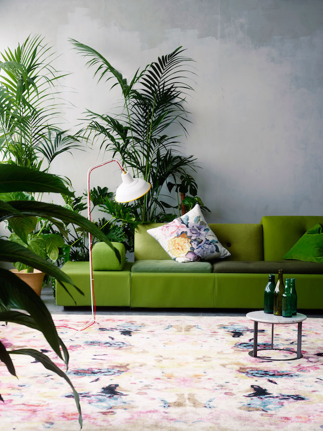 Green sofa and lush indoor plants