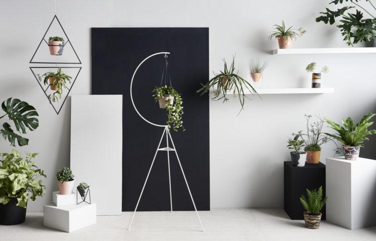Captra Designs
