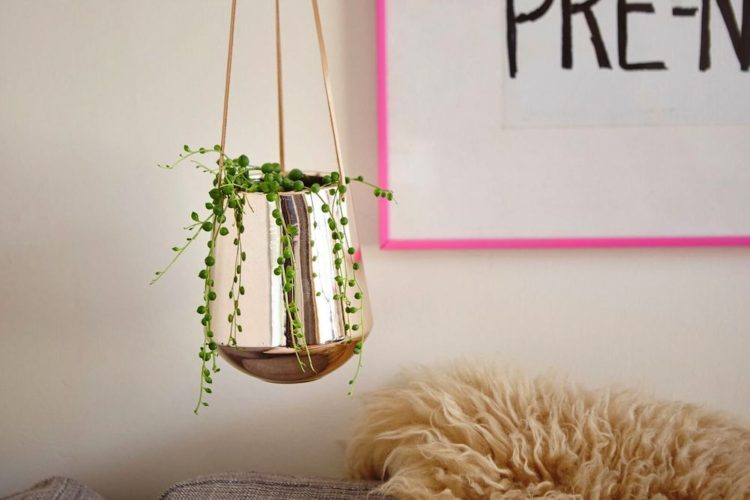 Rose gold hanging planter