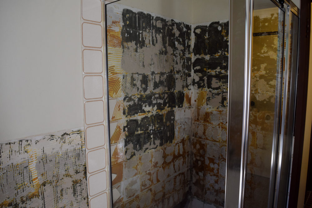 Removed shower and tiles