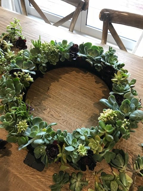 Fill the wreath with succulents