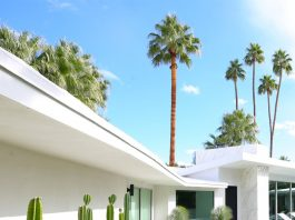 Palm Springs tour