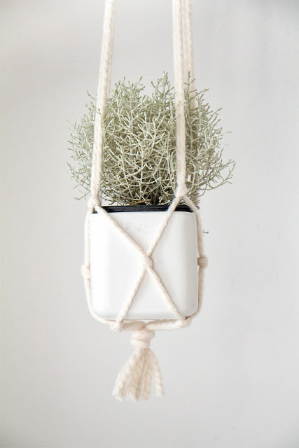Close up of DIY macrame hanging planter