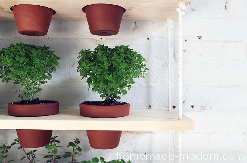 Close up of hanging vertical garden