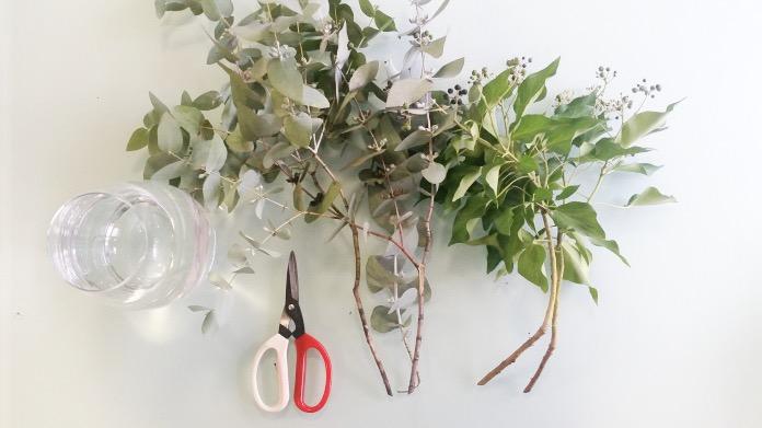 Cut foliage
