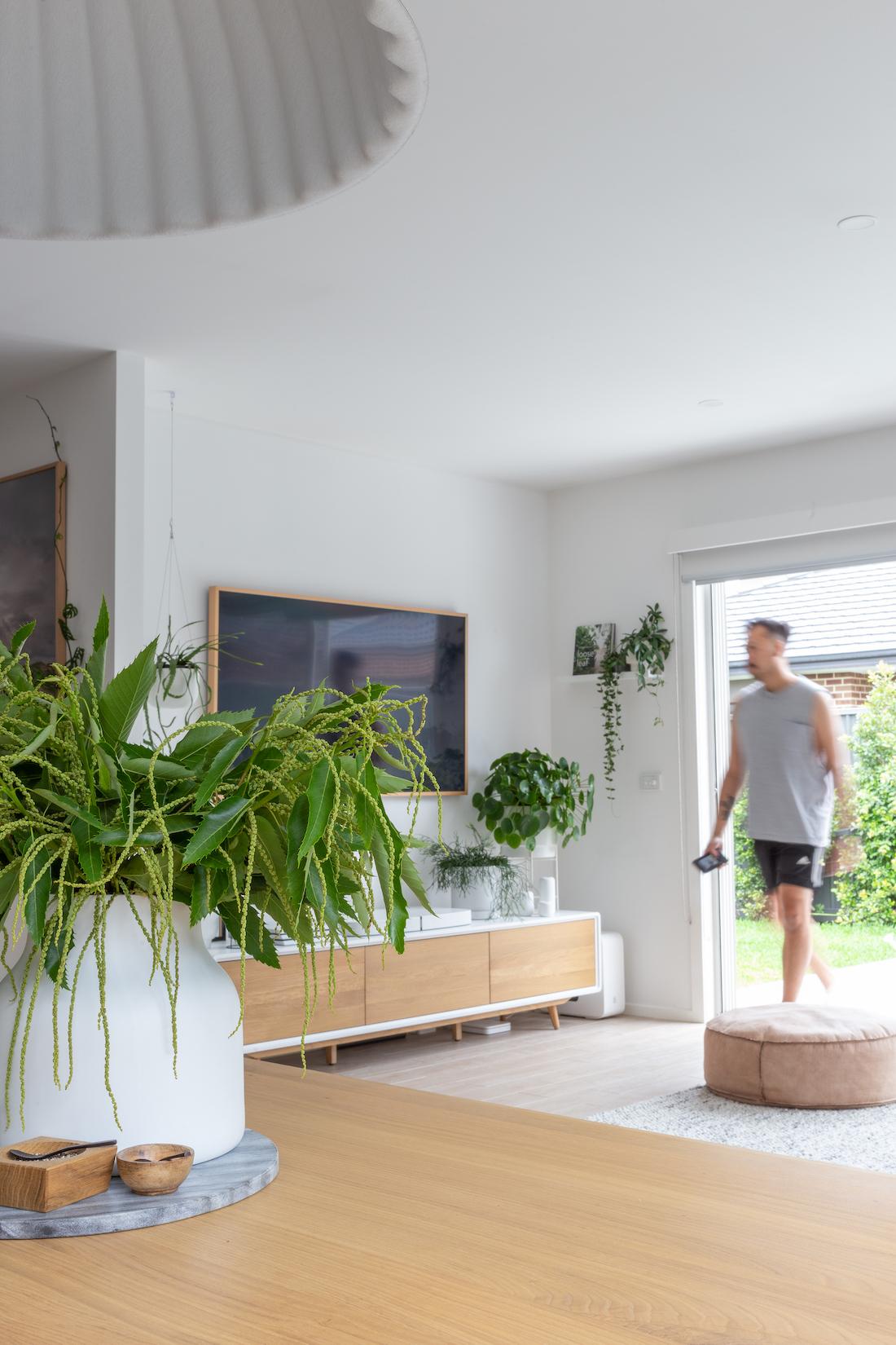 Plant shelf in living room