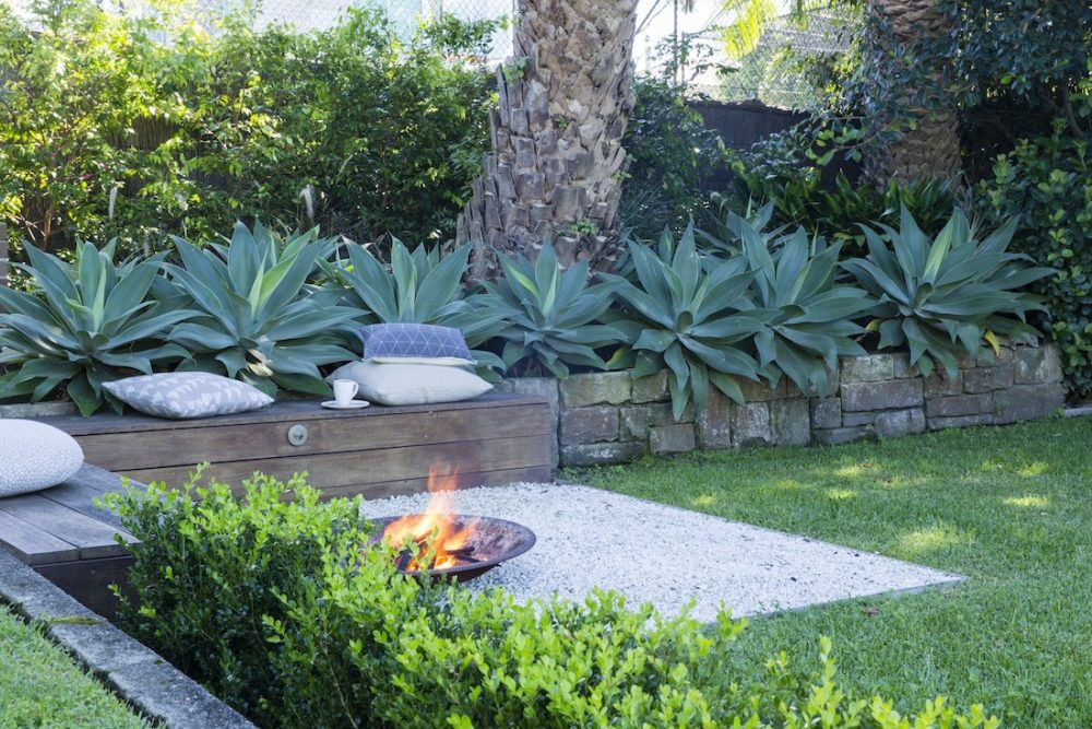 Agave plants timber bench seating and fire pit landscaping mistakes to avoid