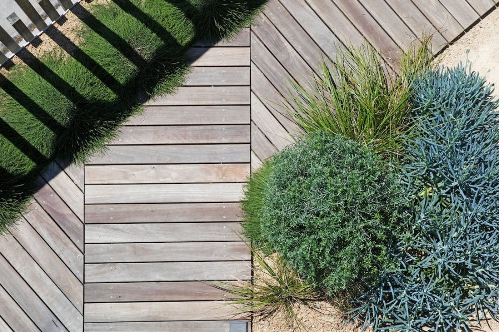 Coastal plants and decking