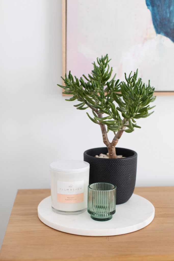 Indoor plants products to style your home