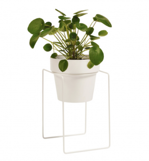 Pot and plant stand