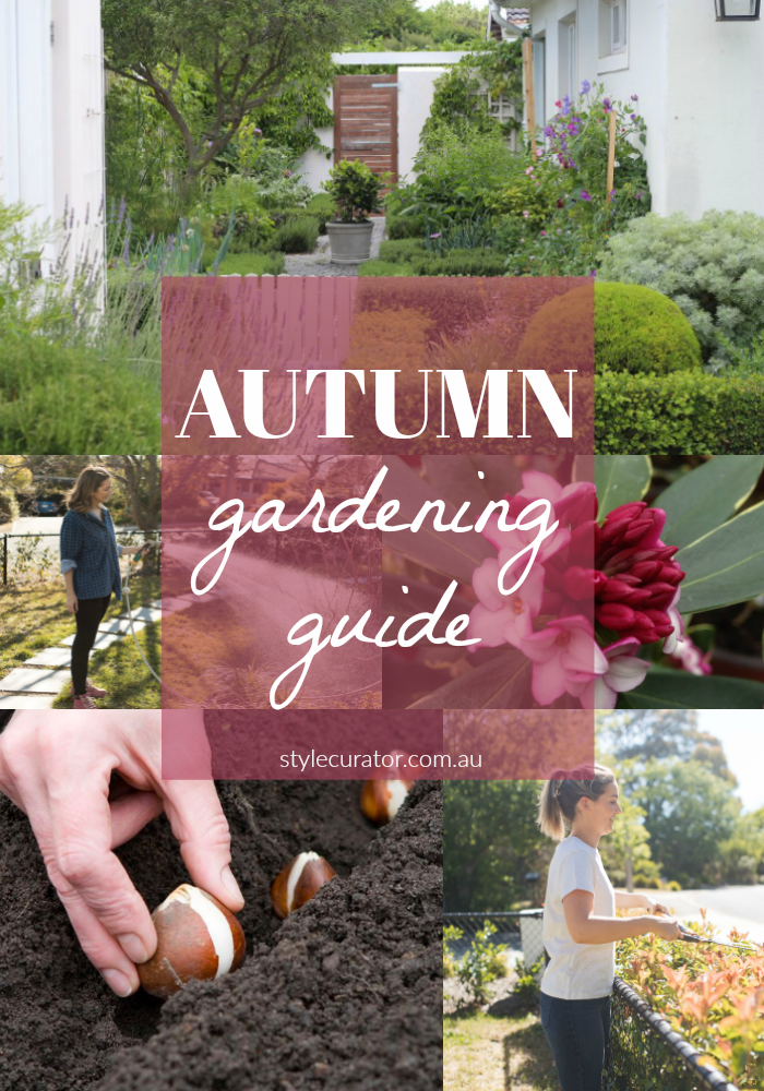 Autumn gardening guide