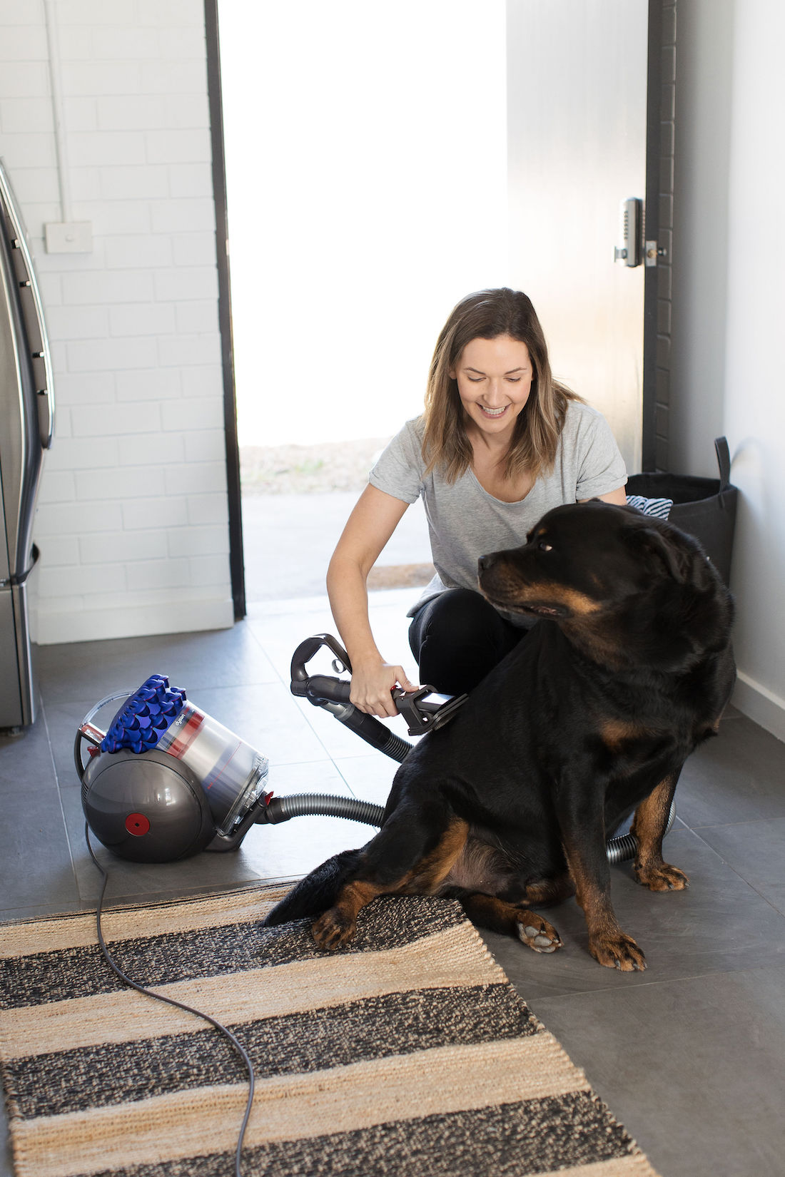Dyson animal attachment Dyson Cinetic Big Ball Animal+ vacuum cleaner