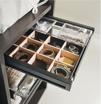 Drawer insert for accessories