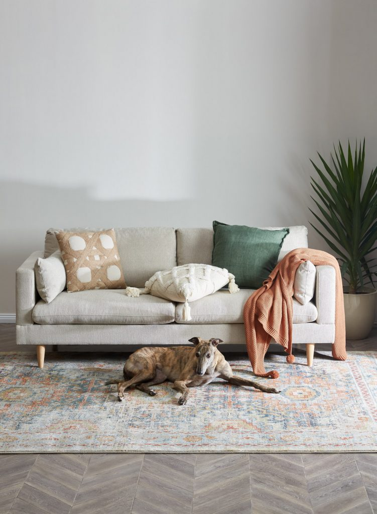 Temple & Webster - Pet-Friendly Rug
