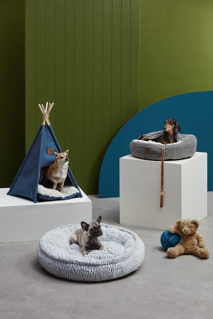 Temple & Webster - Pet Winter Warmers