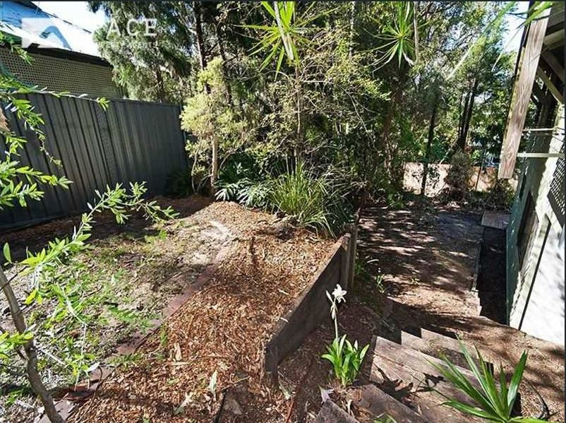 Zou Build_Bardon renovation_before_backyard