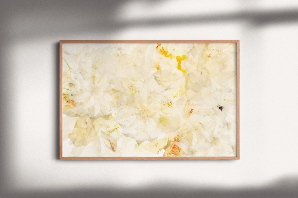 White garden by Paper and Flower