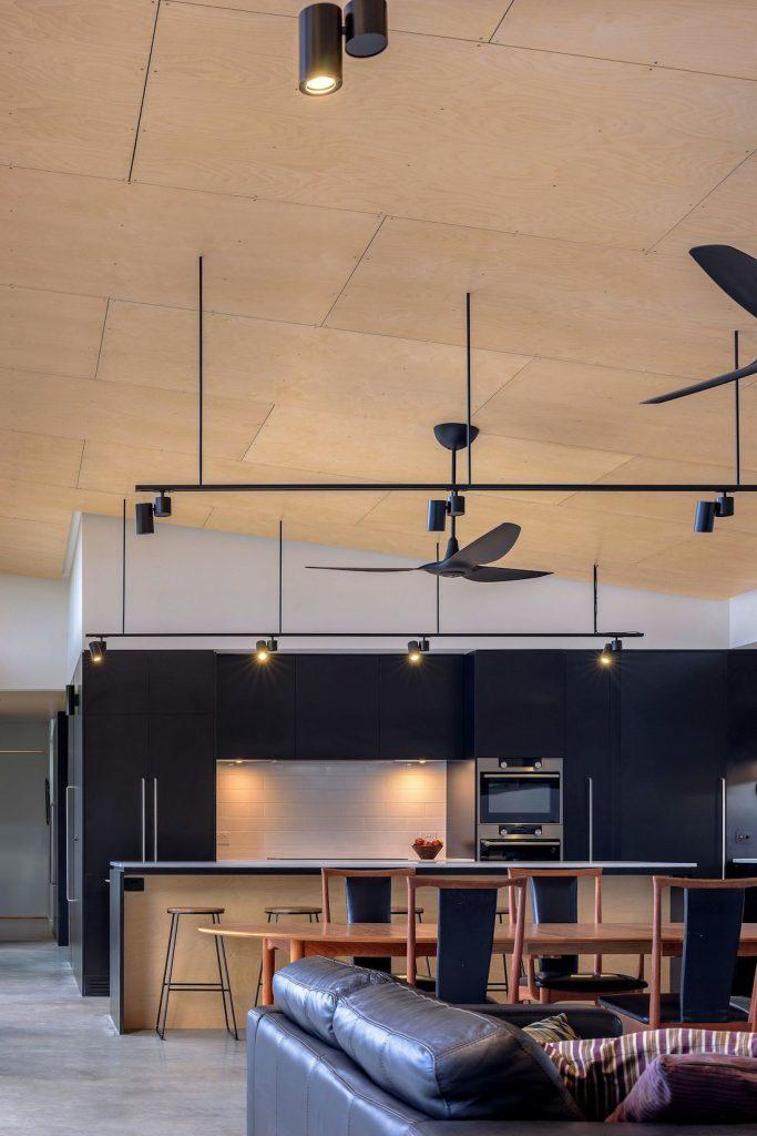 Ben Walker_Elm Grove House_kitchen dining ceilings