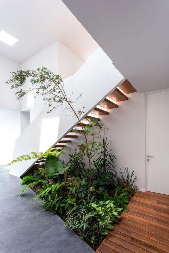 Under stair garden