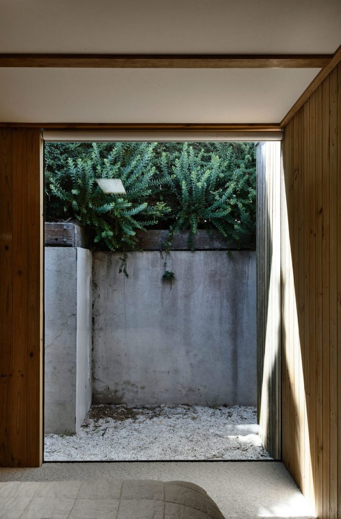 Large window looking out to concrete wall and greenery