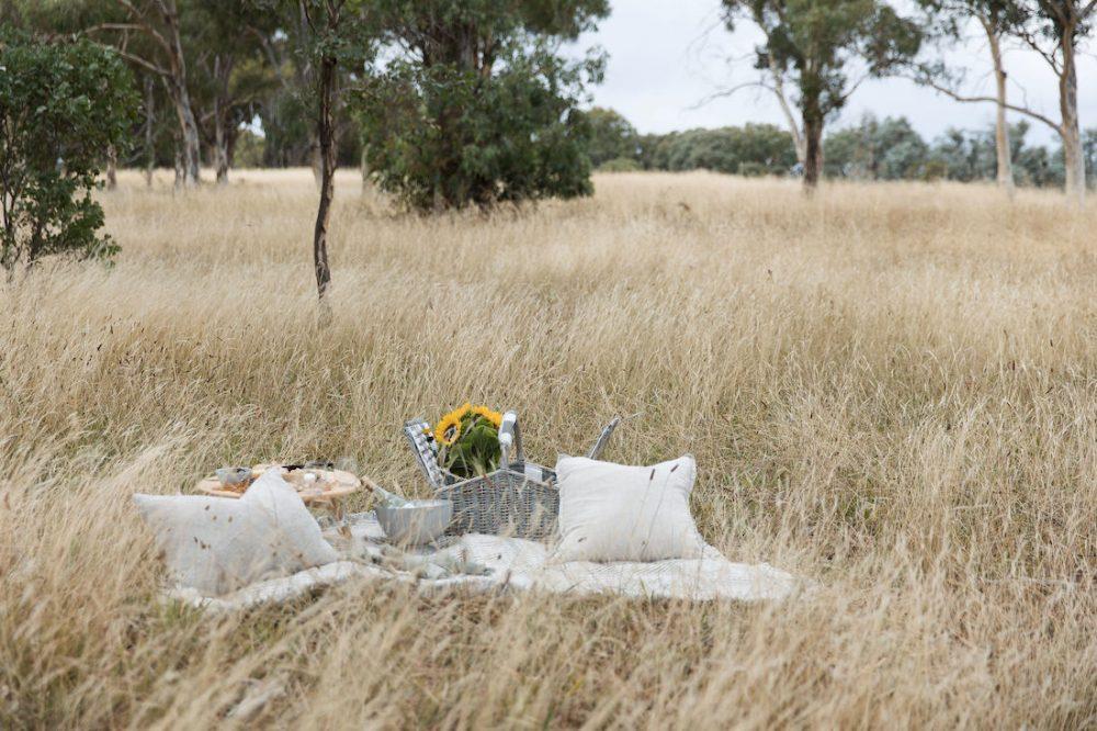 Picnic in the Australian bush