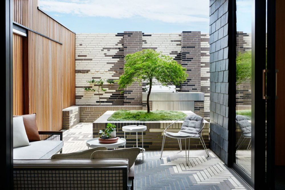 Outside courtyard with maple tree