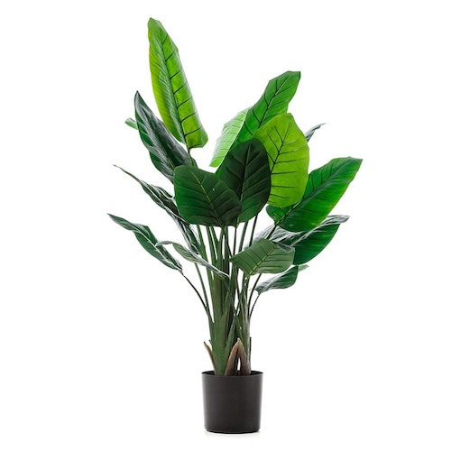 Faux bird of paradise indoor plant