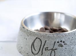 DIY dog bowl