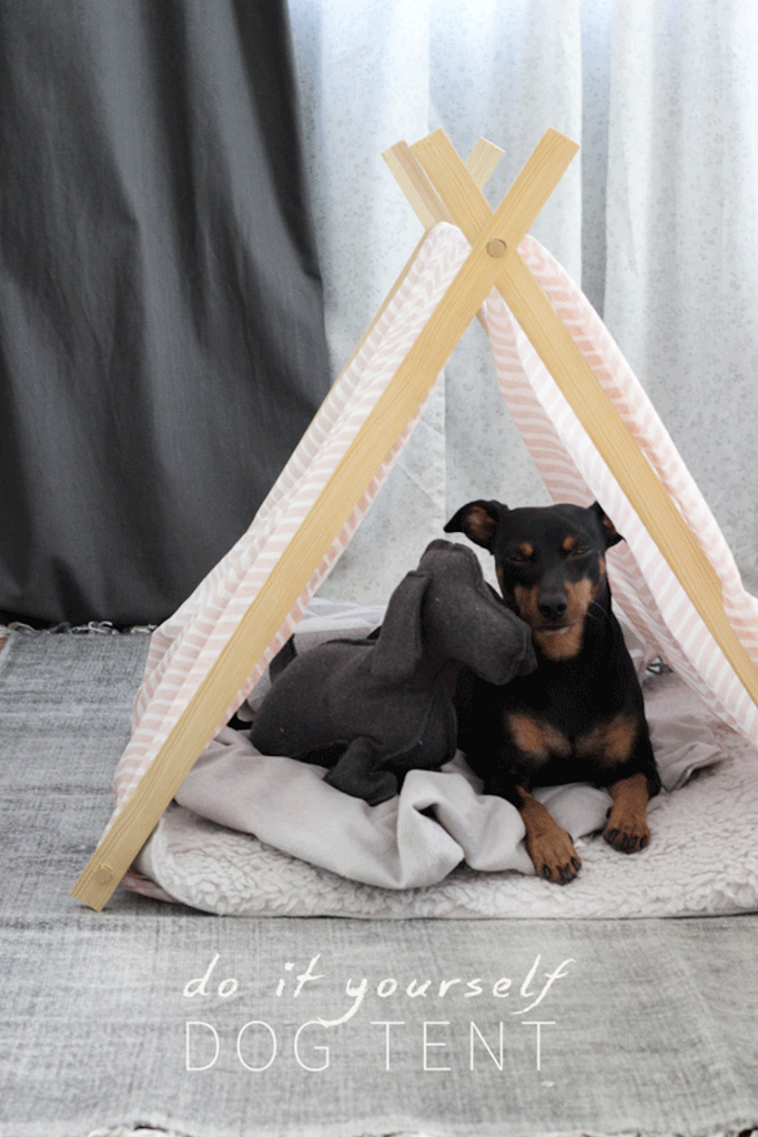 DIY dog tent DIY projects for dogs