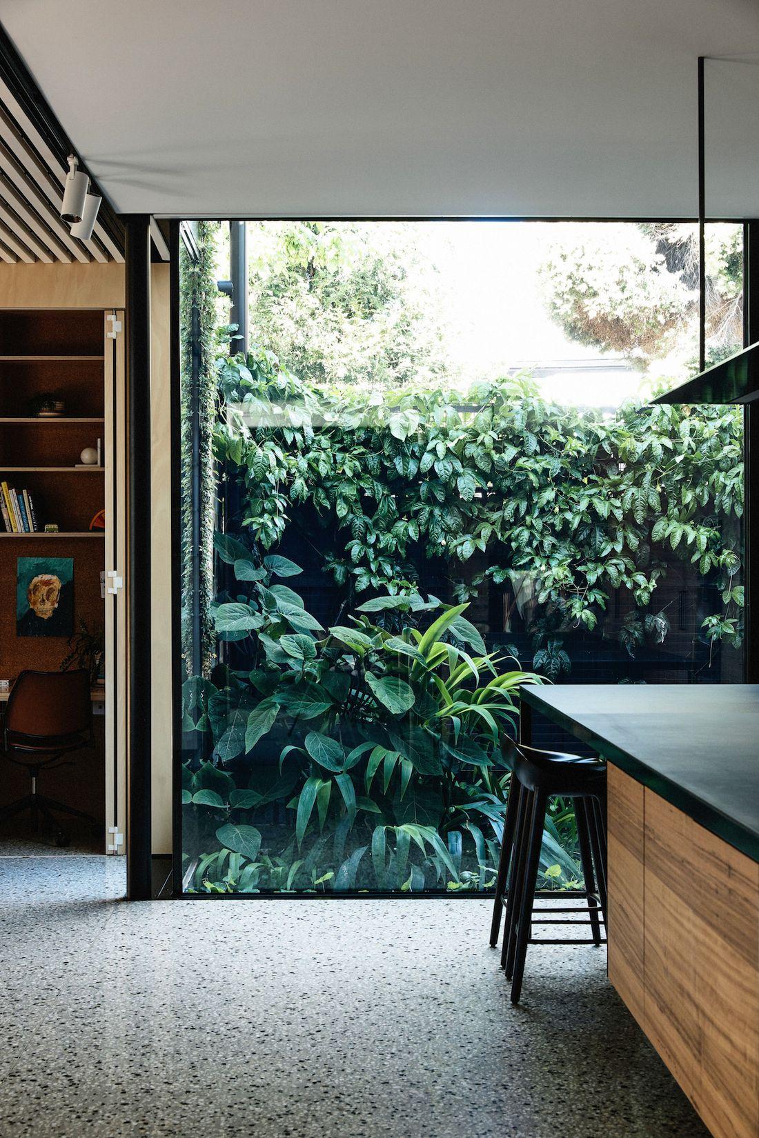 Huge window showcasing garden from kitchen