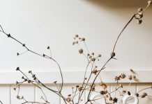 The Seasonal Ceramicist_shaggy vases with dried foliage